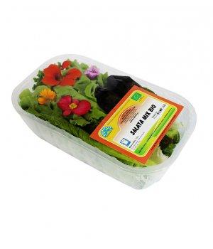 BIO mix sałat świeży POLSKA (około 100g)