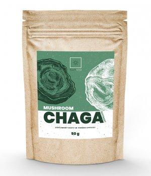 CHAGA grzyb (błyskoporek podkorowy)Ekstrakt10:1 50g