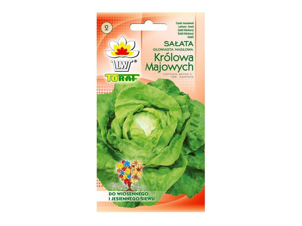 Sałata Królowa Majowych nasiona 2g TORAF